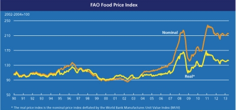 FAO Food Price Index May 2013 jpeg