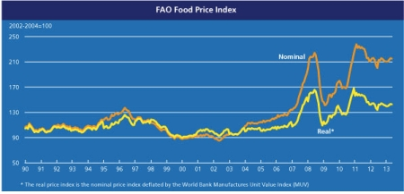 FAO Food Price Index June 2013 jpeg