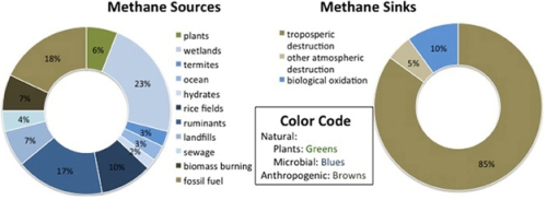 Methane Sources and Sinks jpeg
