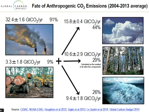 Fate of Anthropogenic CO2 Emissions jpeg