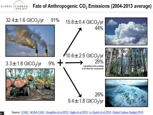 Fate of Anthropogenic CO2 Emissions jpeg