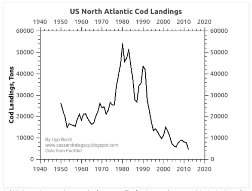 US Cod Landings Latest jpeg